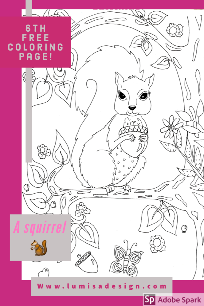 coloring page of a squirrel