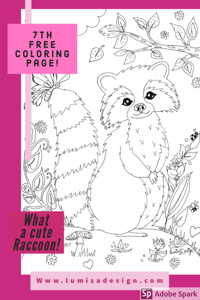 raccoon colouring page
